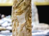 Riviera Monolith